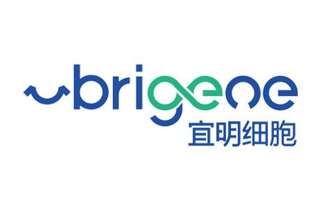 宜明细胞(Brigeoe)完成2亿人民币B轮融资